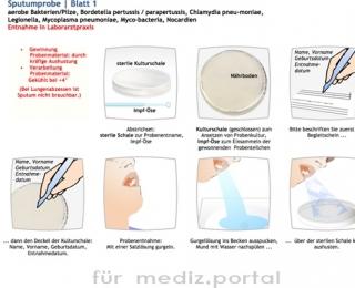 portfoliografik_anleitung1_patientenbögen2
